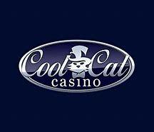 logo de COOLCAT